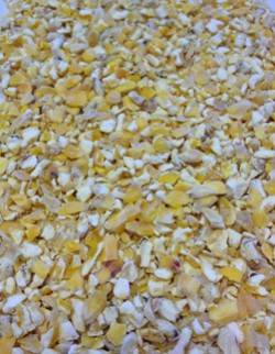 Glasson-Kibbled-Maize-close-up